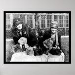 Gatos persas y señoras americanas 1924 poster