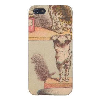 Gatos que consiguen en el caso del iphone del vint iPhone 5 fundas