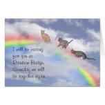Gatos que esperan en el puente del arco iris tarjeta