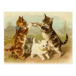 """""""Gatos que juegan postal de un juego"""""""