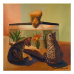 Gatos que miran pescados posters