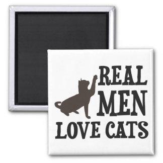 Gatos reales del amor de los hombres iman