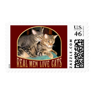 Gatos reales del amor de los hombres