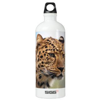 Gatos salvajes del leopardo