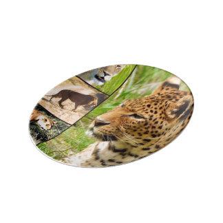 gatos salvajes platos de cerámica
