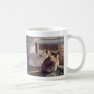 Gatos siameses dos en la ventana 2 tazas