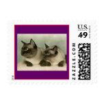 Gatos siameses sellos