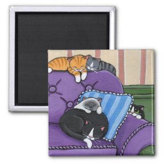 Gatos soñolientos en el imán caprichoso del sofá