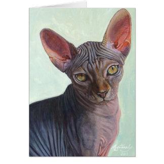 Gatos Sunitha del gato de la esfinge de Sphynx Tarjetón