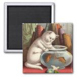 Gatos traviesos - imán del refrigerador del gato d