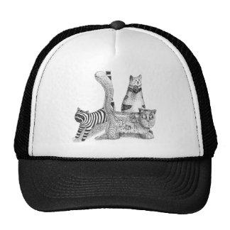 Gatos tristes gorras de camionero