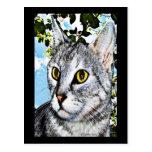 Gatos y arte de Digitaces de la plena floración de Postal
