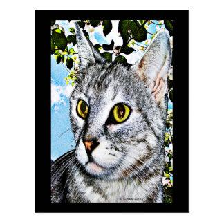 Gatos y arte de Digitaces de la plena floración de Tarjeta Postal