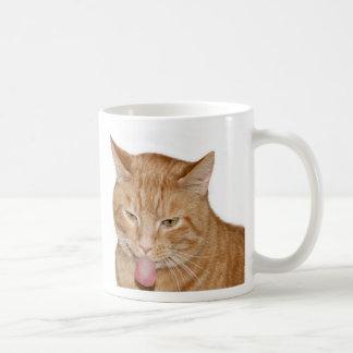Gatos y café tazas