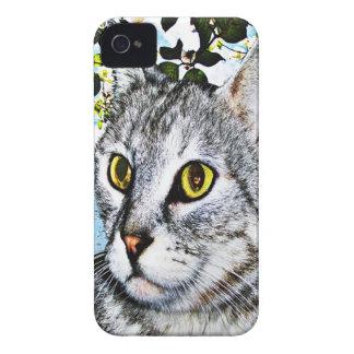 Gatos y cajas de Blackberry de la plena floración iPhone 4 Carcasa