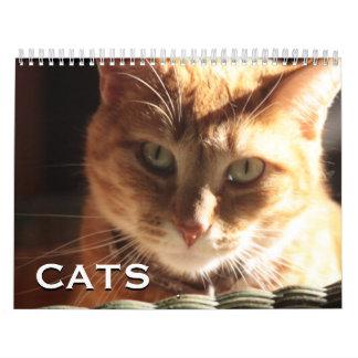 Gatos y gatitos calendario