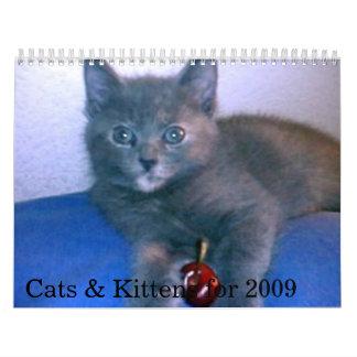 Gatos y gatitos para 2009 calendarios de pared