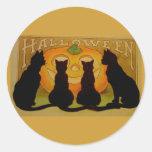 Gatos y Jack O'Lantern de Halloween del vintage Etiquetas Redondas