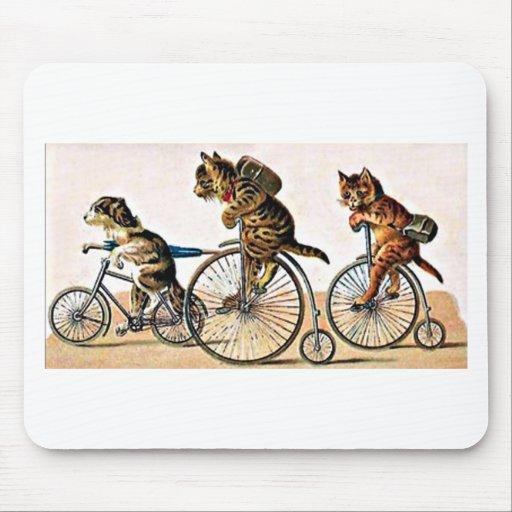 Gatos y perro del vintage en una bici mouse pad