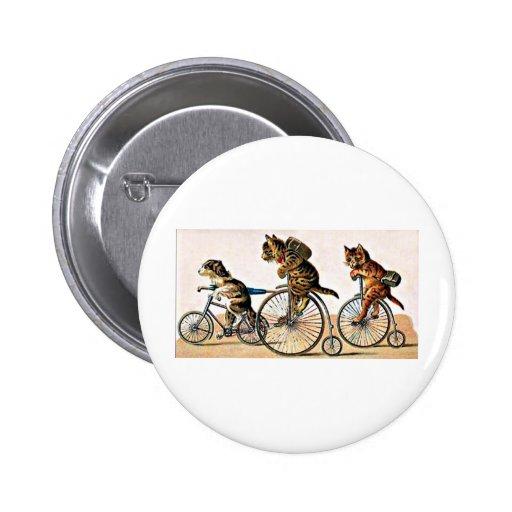 Gatos y perro del vintage en una bici pin