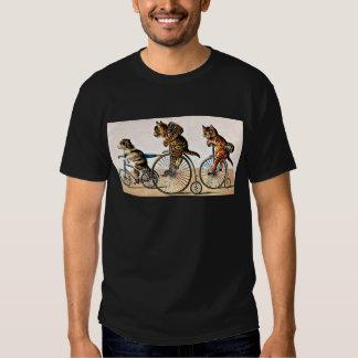 Gatos y perro del vintage en una bici playera