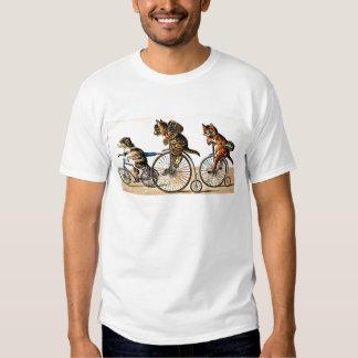 Gatos y perro del vintage en una bici playeras