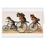 Gatos y perro del vintage en una bici tarjeta