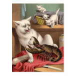 Gatos y postal traviesos de la langosta