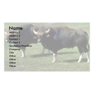 Gaur-adult bulls business card