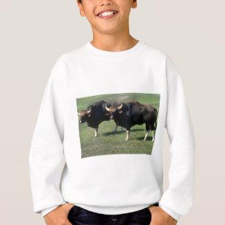 Gaur-adult bulls sweatshirt