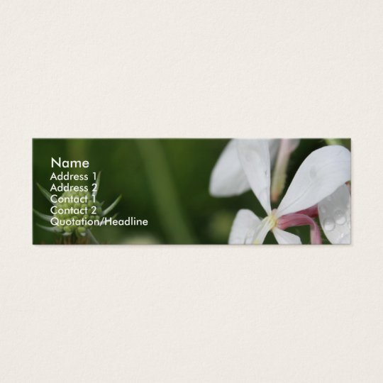 Gaura 2 mini business card