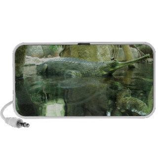 Gavialis gangeticus iPod speaker