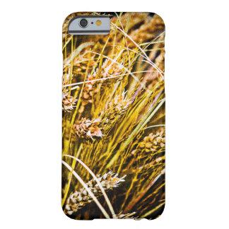 Gavilla de trigo - gracias funda barely there iPhone 6