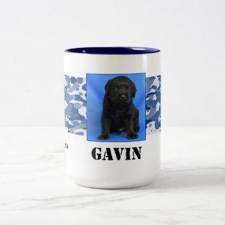 Gavin Mug