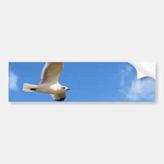 Gaviota altísima - cielo azul brillante pegatina para auto