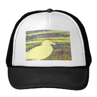 Gaviota amarilla gorras