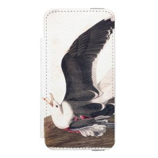 Gaviota apoyada negra de la placa 241 de Audubon Funda Billetera Para iPhone 5 Watson