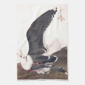 Gaviota apoyada negra de la placa 241 de Audubon Toallas De Mano