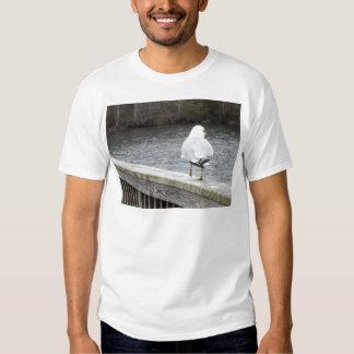 Gaviota Camisas