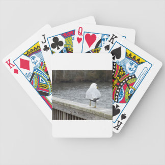 Gaviota Baraja Cartas De Poker