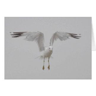 Gaviota con las alas perpendiculares tarjeta de felicitación