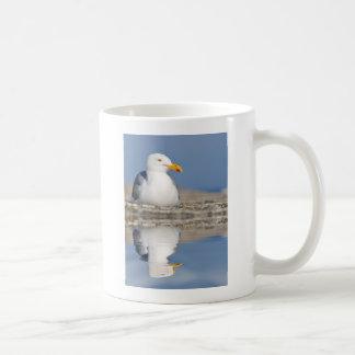 Gaviota de arenques con la reflexión grande en el taza