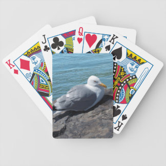 Gaviota de arenques en el embarcadero de la roca cartas de juego