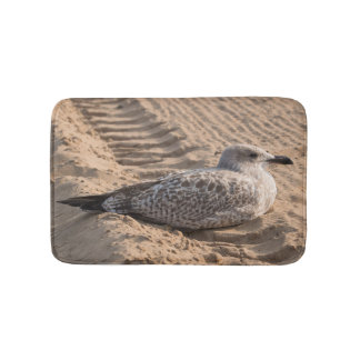 Gaviota de arenques juvenil