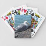 Gaviota de arenques que descansa sobre el embarcad baraja de cartas