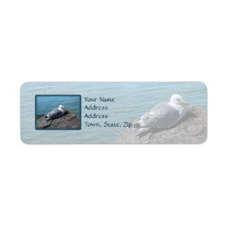 Gaviota de arenques que descansa sobre el embarcad etiquetas de remite