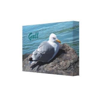 Gaviota de arenques que descansa sobre el embarcad impresiones en lona estiradas