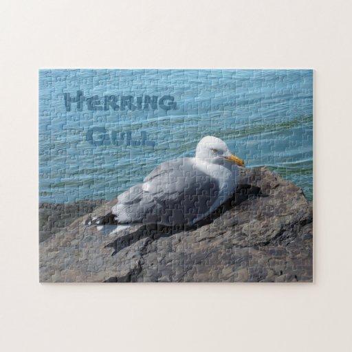 Gaviota de arenques que descansa sobre el embarcad puzzle