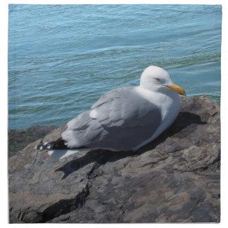 Gaviota de arenques que descansa sobre el embarcad servilletas