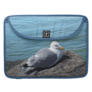 Gaviota de arenques que descansa sobre el funda para macbook pro